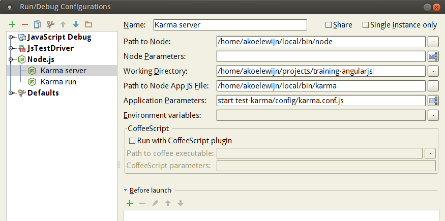 Webstorm Karma Server run configuration